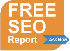 Free SEO report
